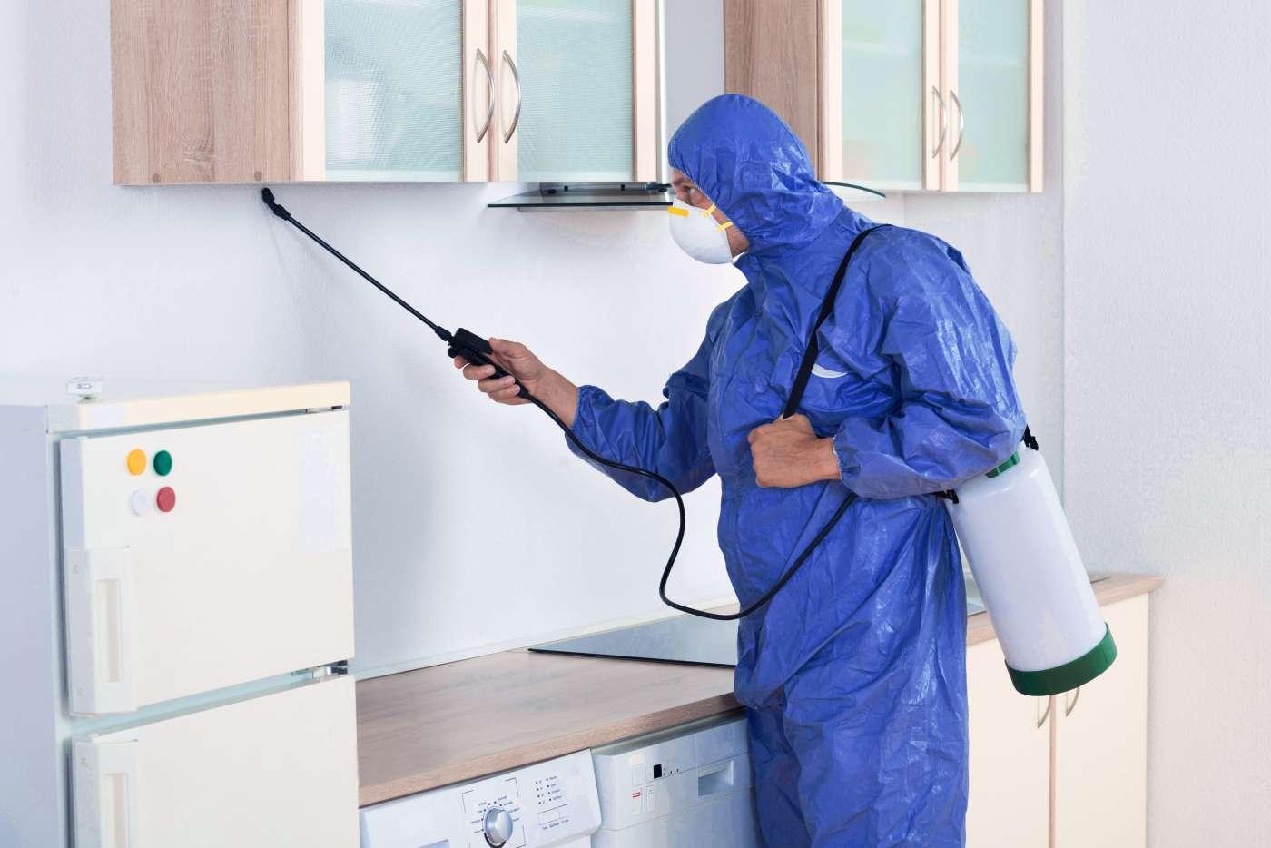 Mantis Plagas y su nuevo servicio de purificadores y sanitizadores de aire