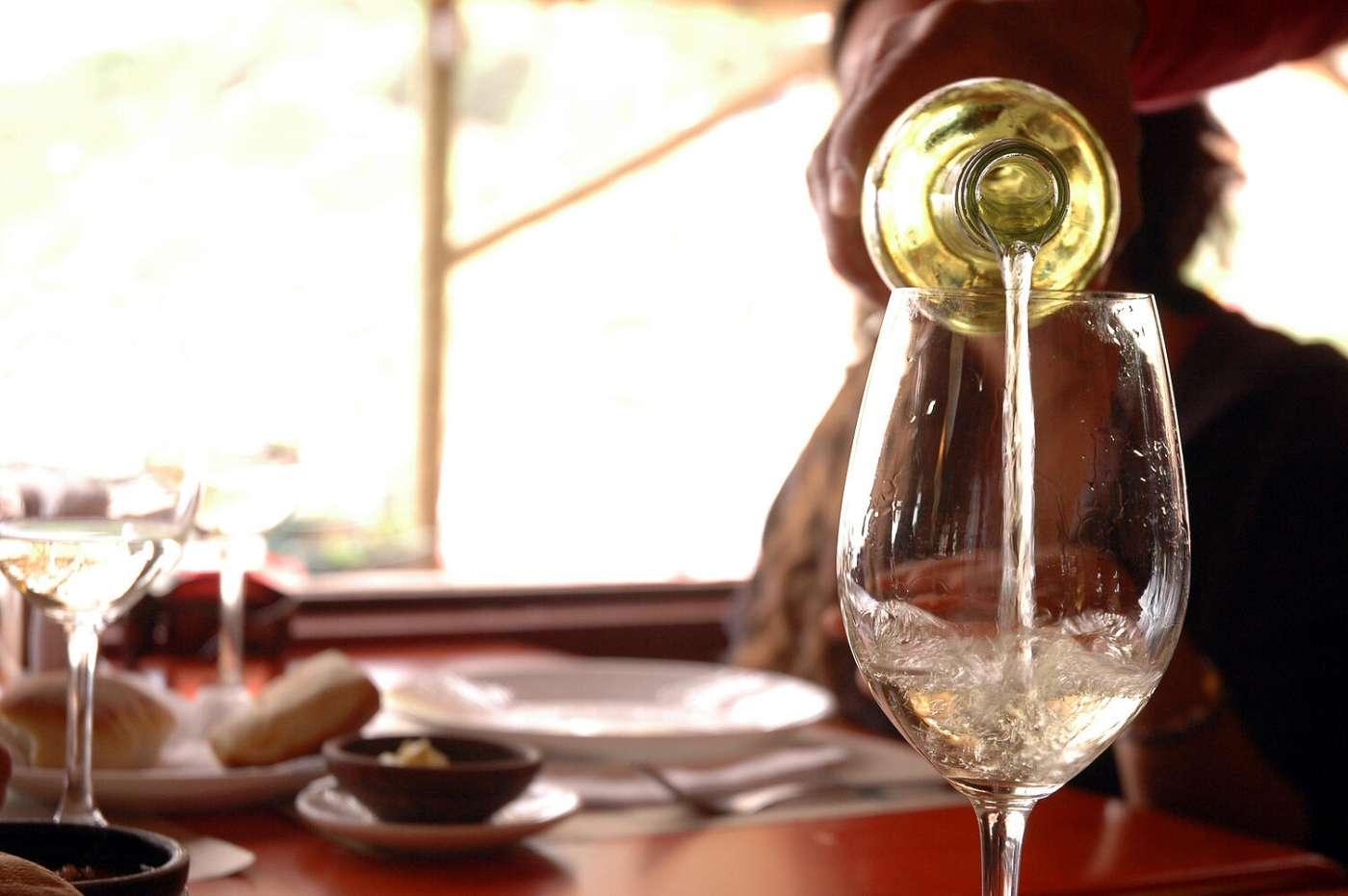 El que no toma vino, ¿Para qué vino?