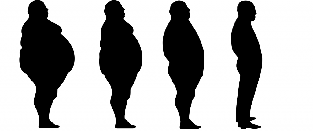 12 de noviembre: Día Mundial de Lucha Contra la Obesidad