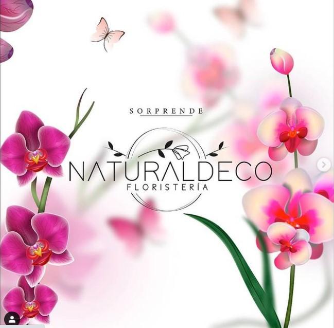 Dale un toque especial a tu hogar con NaturalDeco
