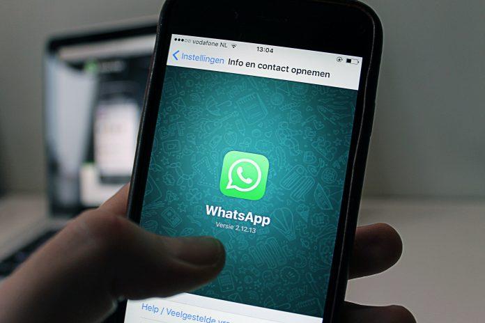 ¿App, chatbots o whatsapp business?