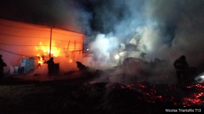 Varios animales muertos en incendio que afecta caballerizas en Colina