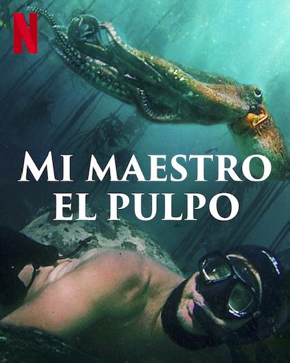 Mi maestro El Pulpo: Un molusco fantástico