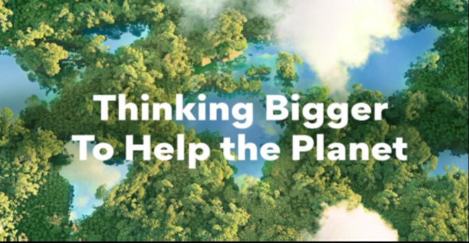 Restaura la vitalidad de la tierra optando por opciones más ecológicas para tu vida