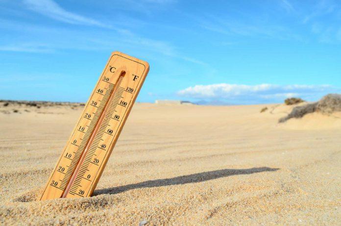 Científicos coinciden en la urgencia de actuar más que alertar para frenar el cambio climático